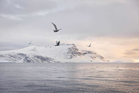 美国务院官员:正认真对待中共的北极野心