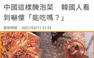 中国泡菜存卫生安全隐患 韩国进口量骤减30%