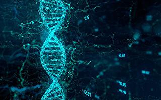 研究揭長壽祕密:超105歲老人擁有獨特基因
