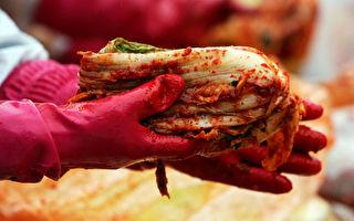 韓國查出15款中國製泡菜含致病細菌