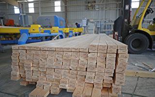 美锯木厂全力增产 芝加哥木材期货价格腰斩
