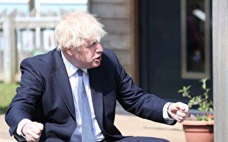 一头浓密金发 英国宝宝酷似首相约翰逊走红