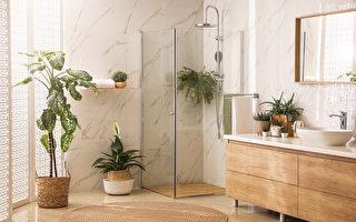 这些植物养在浴室活得更好 还能去湿除臭