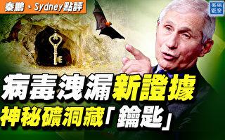 【秦鵬直播】病毒洩漏新證據?神祕礦洞藏鑰匙