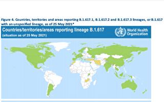 世卫:印度变种病毒在54个国家地区发现