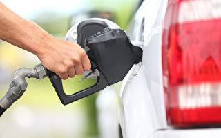 加州22县油价超4.2美元 AAA提醒假日出行须知