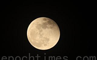 组图:超级花血月登场 全球星迷聚集观看