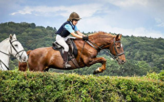 太巧 英国马术比赛 母女选手所骑马匹亦母子