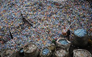 新西兰的回收塑料垃圾都去了哪?