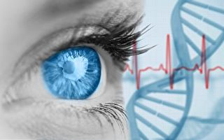 基因蛋白技术助失明者重见光明