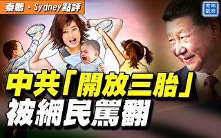 """【秦鹏直播】中共""""开放三胎""""被网民骂翻了"""