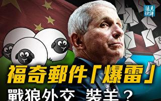 【遠見快評】福西郵件爆雷 戰狼外交「裝羊」?