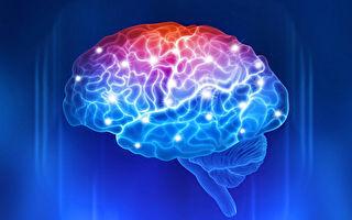 科學家找到認知力時鐘 可準確衡量大腦健康水平