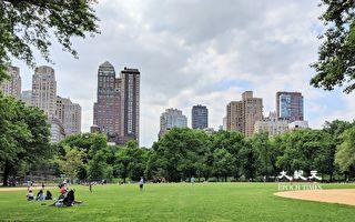 紐約州染疫住院者不到千人 紐約市確診率降至疫情以來新低