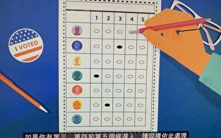 初選在即  顧雅明舉辦「排序複選投票制」中文說明會