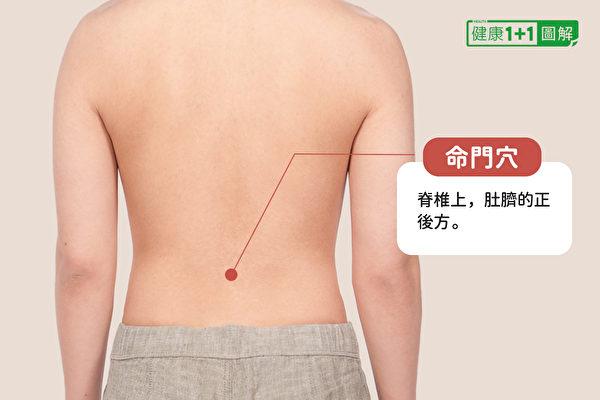 命门穴在肚脐正后方,两肾中间。(健康1+1/大纪元)
