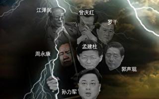 """李正宽:习近平""""刮骨疗毒"""" 政法官员惶恐"""