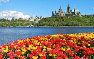 【渥太华疫情6·6】学校不重开 市府表失望