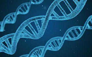 母亲视角(五):深入反思达尔文进化论