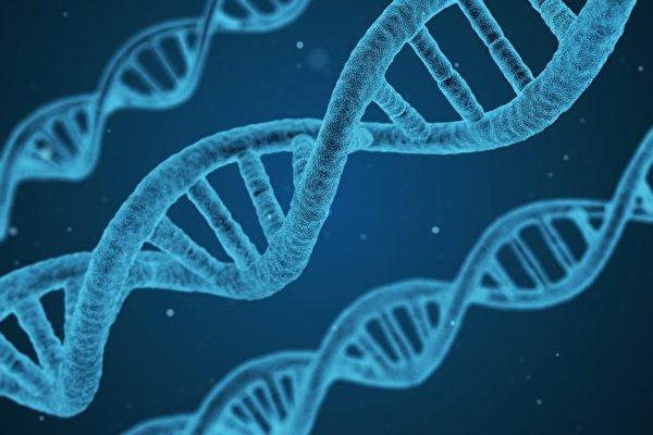 母親視角(五):深入反思達爾文進化論