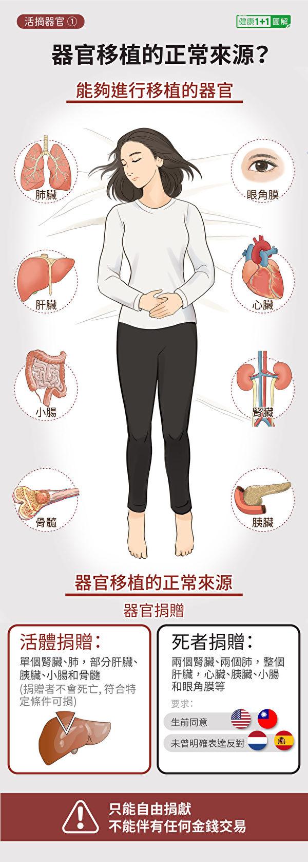 哪些器官可以移植?器官移植的正常來源有哪些?(健康1+1/大紀元)