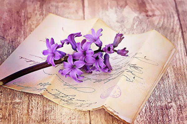 少女寫給未來丈夫的信 與現實有驚人巧合