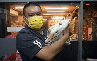 来台湾东北大厨:疫情是杀手 抵不过台人情味
