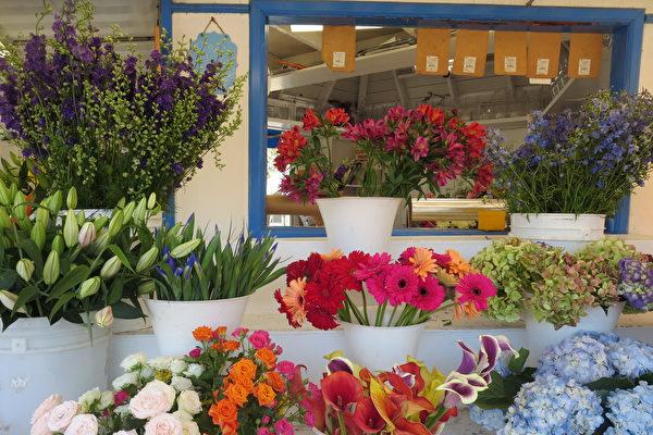 《花和朋友》老板:让鲜花传递爱意