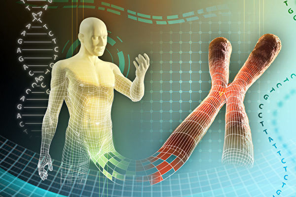 迄今最全面人类基因组测序完成