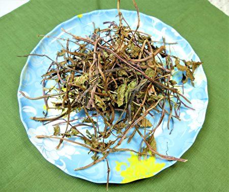 新鮮的仙草有著卵圓形的綠葉子,邊緣有鋸齒,長相有點像薄荷,採集後曝曬成仙草乾,就是細細的枯乾枝莖。