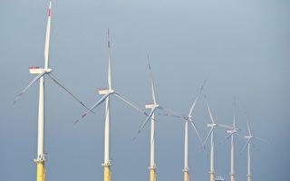 環境專家:加州不能依賴風電