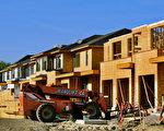 新屋销量跌 北美木材价格暴跌40%以上