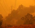 圣塔罗莎一天内发生2起植被大火