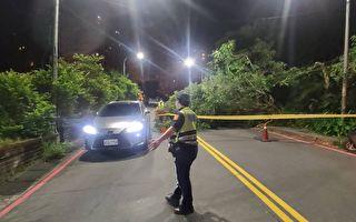路樹倒塌阻礙交通  基市府迅速切除移置