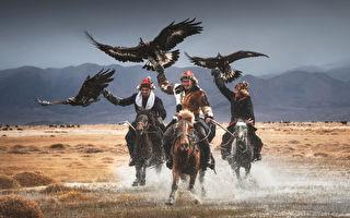 組圖:倖存的蒙古驯鹰師與猛禽的深厚情誼