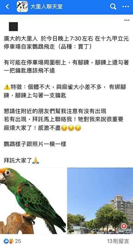 """脸书社团""""大里人聊天室"""",失主陈先生贴文说,宠物鹦鹉飞走了!"""