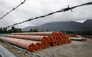 需求强弹供应受限 油价明年或每桶100美元