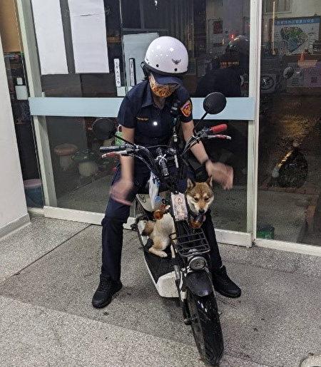 柴犬Herry听到员警召唤它的名字,马上跳上警用机车。