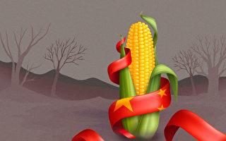 【财商天下】大量粮食靠进口 中国耕地却抛荒?