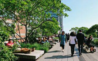 研究:城市自然景观可改善人体健康