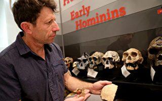 組圖:以色列考古發現史前新種人類化石
