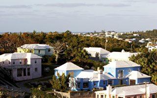 為什麼在百慕達 家家戶戶都有白色屋頂?