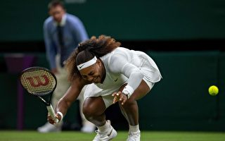 溫網球場雨滑惹禍 小威廉絲首輪傷退