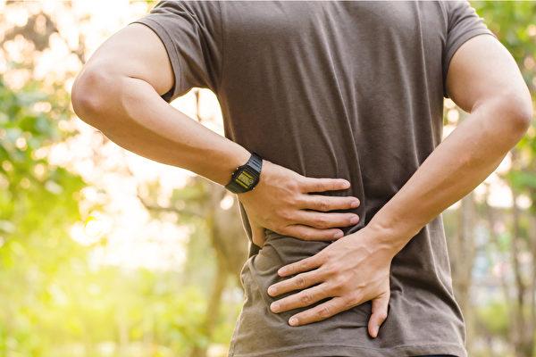 常腰酸、腰痛可能是肾虚警讯,中医调养可预防肾脏疾病。(Shutterstock)