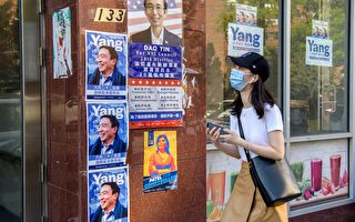亞美法援處民調:紐約市68%華裔初選投楊安澤