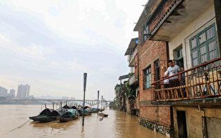 钟原:党庆为先 洪水泛滥灾区不见高层影子