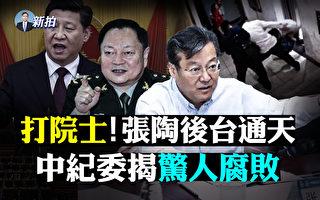 """【拍案惊奇】张陶殴打两院士 后台被曝""""通天"""""""