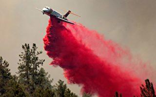 北加州复合大火蔓延 周末热浪致灭火难度升