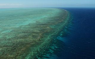 联合国拟将大堡礁列濒危遗产草案被废除