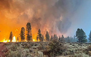 俄勒冈州靴筒野火规模之大 形成独自气候现象
